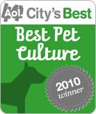 dog-aol-award-winner.jpg